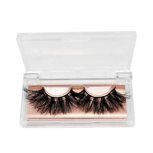 Acrylic lashes cases